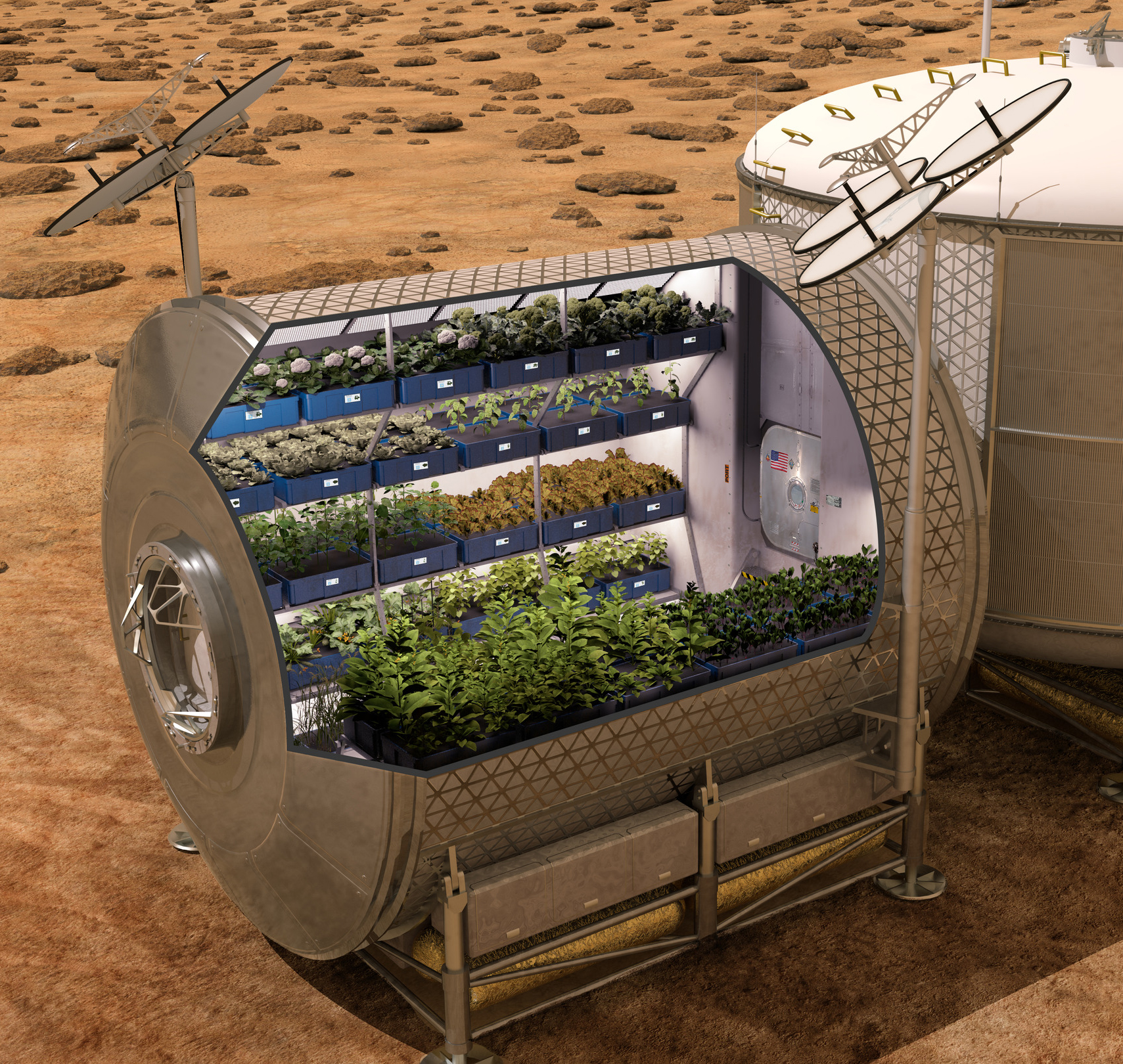 Farming in Space | Successful Farming
