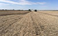 大豆收获期间的约翰迪尔联合收割机。