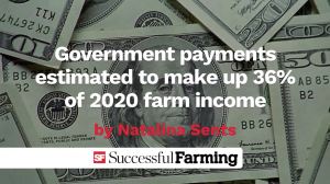 Government payments estimated to make up 36% of 2020 farm income thumbnail