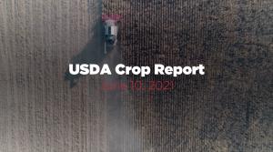 cropreport51021