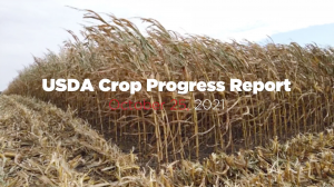 usda crop progress report