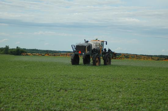 Dicamba use for 2020 in question due to federal court ruling