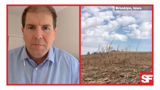 Iowa damaged corn will not be harvested