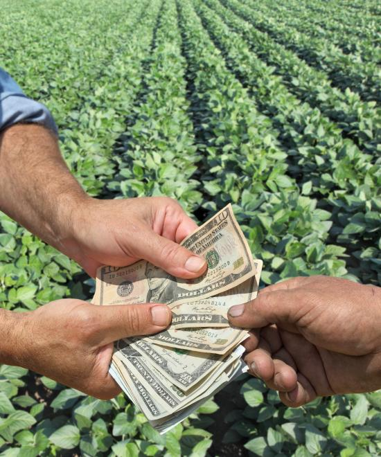 Farm income improves significantly, say ag bankers